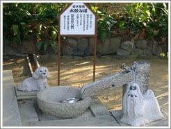 弓弦羽神社の犬の水飲み場