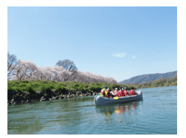 淀川河川公園背割堤地区のお花見船Eボート