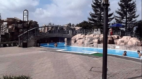 鶴見緑地屋外プール(流水プール)